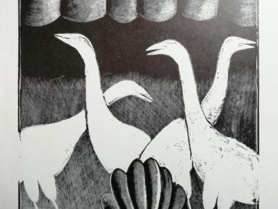 V. Komárek Ptáci grafika