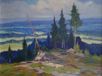 V. Stein obraz Pohled do údolí